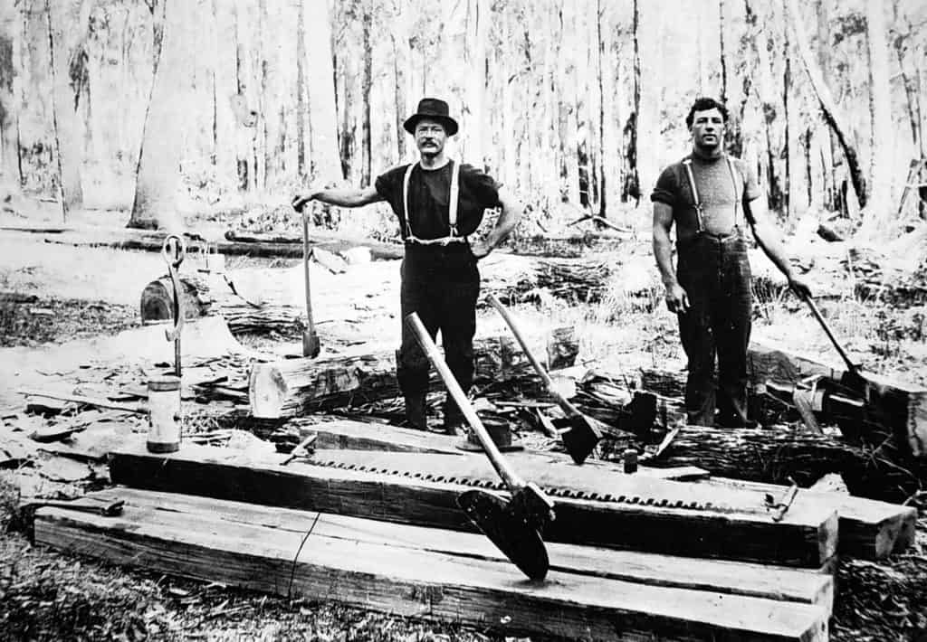 Early 20th century foresters hewing logs with broad axes